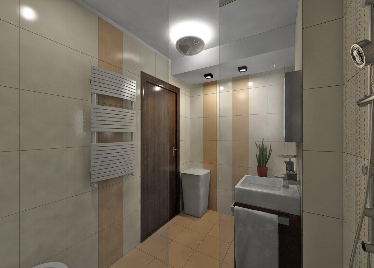 Design interior apartament Parcul Carol-16